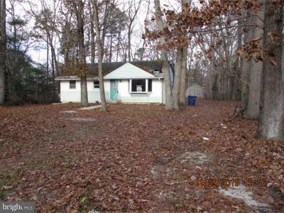 Vineland Single Family Home For Sale: 811 Strawberry Avenue