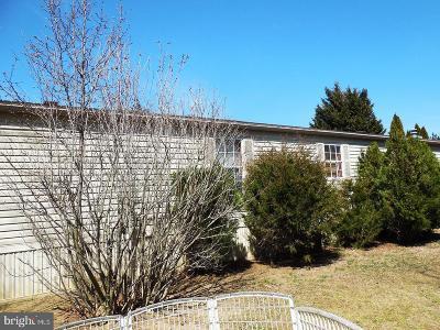 Mantua Single Family Home For Sale: 231 Tony Circle