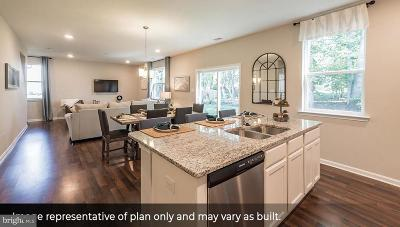 Single Family Home For Sale: 712 Beechwood Drive