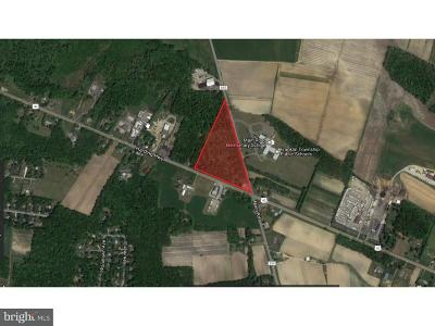 Newfield Commercial For Sale: 1444 Harding Highway