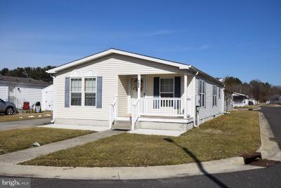 Williamstown Single Family Home For Sale: 703 Ferris Lane