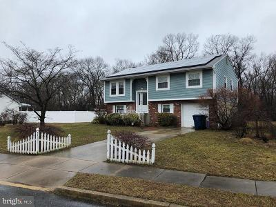 Gloucester County Single Family Home For Sale: 29 Concord Drive