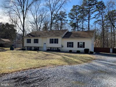 Clayton Single Family Home For Sale: 296 Fries Mill Road
