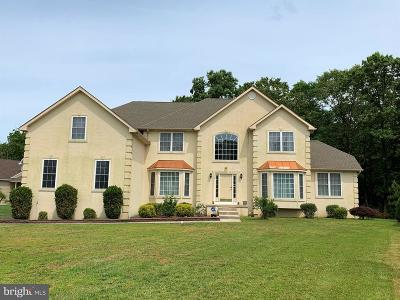 Franklinville Single Family Home For Sale: 128 White Tail Pass