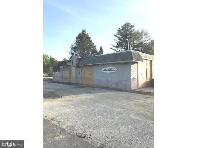 Franklinville Commercial For Sale: 2823 Delsea Drive
