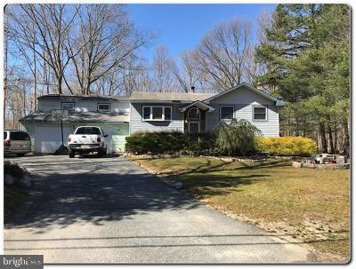 Franklinville Single Family Home For Sale: 771 Salem Avenue