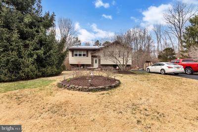 Franklinville Single Family Home For Sale: 807 Salem Avenue