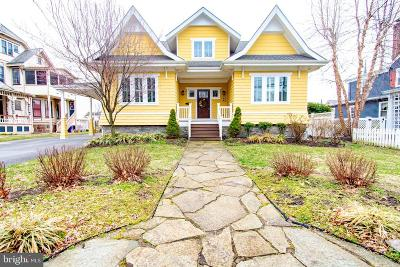 Woodbury Single Family Home For Sale: 189 Delaware