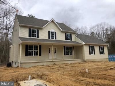 Franklinville Single Family Home For Sale: 3697 Tuckahoe Road