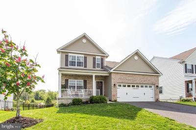 Swedesboro Single Family Home For Sale: 27 Buckeye Road