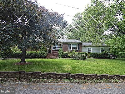 Woodbury Single Family Home For Sale: 139 Walker Avenue