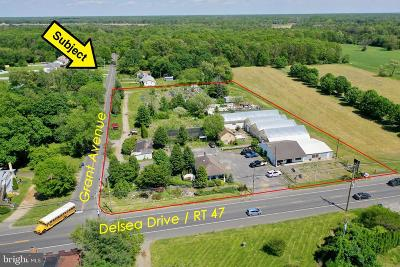 Franklinville Residential Lots & Land For Sale: 3102 Delsea Drive