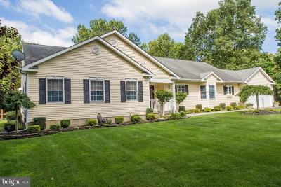 Franklinville Single Family Home For Sale: 539 Lantern Way