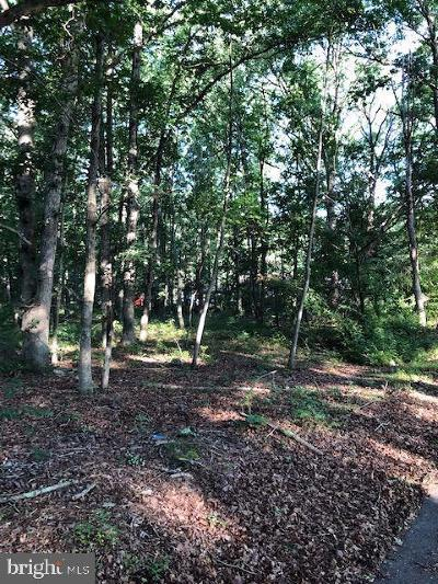 Newfield Residential Lots & Land For Sale: New York Avenue