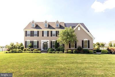 Greenwich Meadows Single Family Home For Sale: 736 Farmhouse Road
