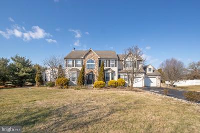 Swedesboro Single Family Home For Sale: 361 Rainey Road