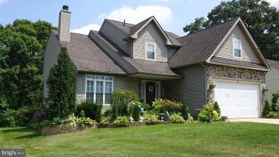 Woodbury Single Family Home For Sale: 2906 Good Intent Road