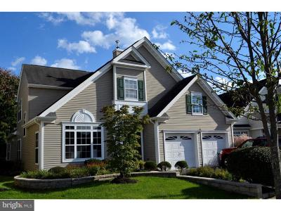 West Windsor Single Family Home For Sale: 125 Tunicflower Lane