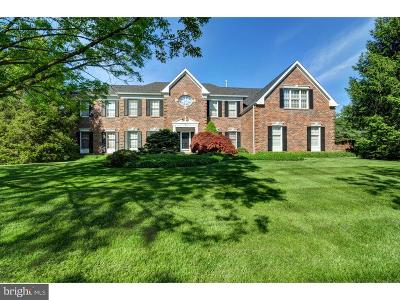Princeton Junction Single Family Home For Sale: 38 Millbrook Drive