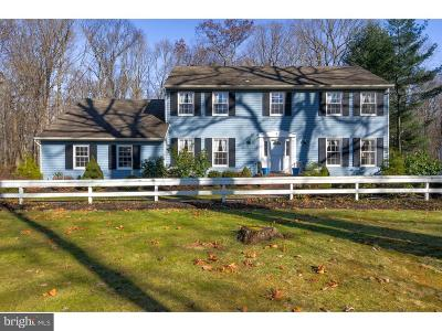Princeton Junction Single Family Home For Sale: 232 Village Rd E