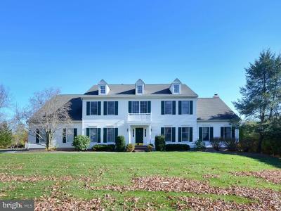 Princeton Single Family Home For Sale: 43 Ettl Circle