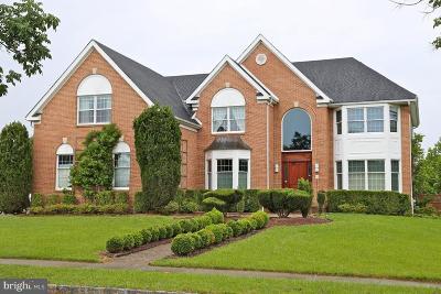 Princeton Junction Single Family Home For Sale: 47 Zaitz Farm Road