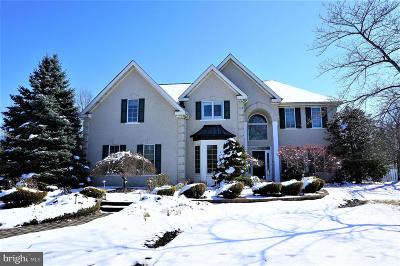 Princeton Junction Single Family Home For Sale: 34 Spruce Street
