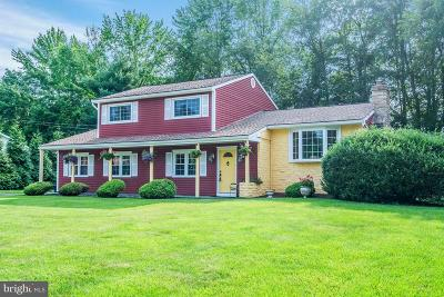 Princeton Junction Single Family Home For Sale: 10 Windsor Drive