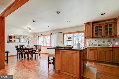 Princeton Single Family Home For Sale: 521 State Road
