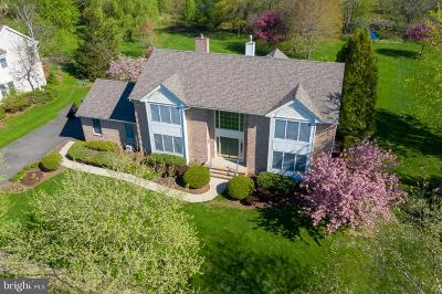 Princeton Junction Single Family Home For Sale: 3 Woodbury Court