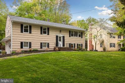 Princeton Junction Single Family Home For Sale: 94 Princeton Hightstown Road