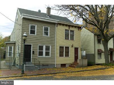 Trenton Single Family Home For Sale: 255 Clay Street