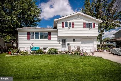 Trenton Single Family Home For Sale: 227 George Dye Road