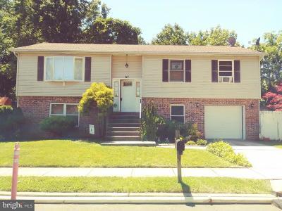 Trenton Single Family Home For Sale: 67 Homan Avenue