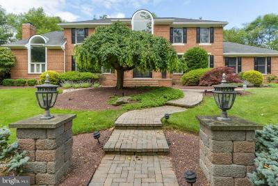 Princeton Junction Single Family Home For Sale: 6 Revere Court