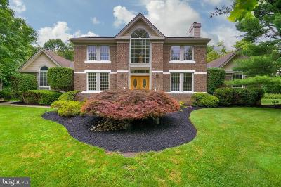 Princeton Junction Single Family Home For Sale: 5 Revere Court
