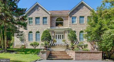 Princeton NJ Single Family Home For Sale: $2,999,000