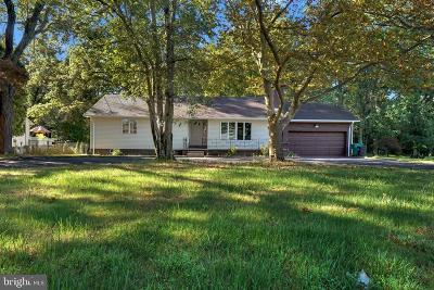 Pennington Single Family Home For Sale: 291 Pennington Lawrenceville Road