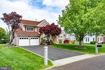 Plainsboro Single Family Home For Sale: 9 Webster Court