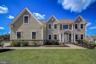 Somerset County Single Family Home For Sale: 23 Liam Place