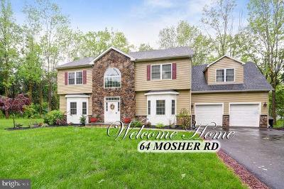Princeton Single Family Home For Sale: 64 Mosher Road
