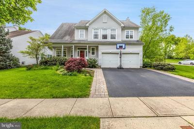 Princeton Single Family Home For Sale: 94 York Drive