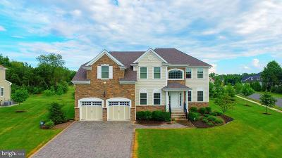 Somerset County Single Family Home For Sale: 2 Liam Place