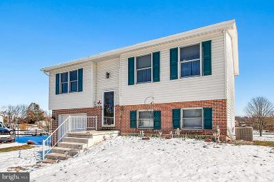 Littlestown Single Family Home For Sale: 1434 Frederick Pike