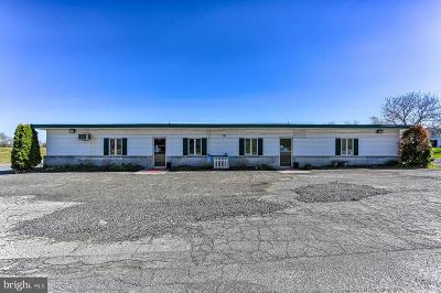 Adams County Commercial For Sale: 674 Arendtsville Road