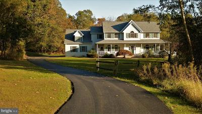 Gettysburg Single Family Home For Sale: 90 Charmed Circle Drive