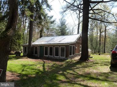 Biglerville Single Family Home For Sale: 4175 Pine Grove Road