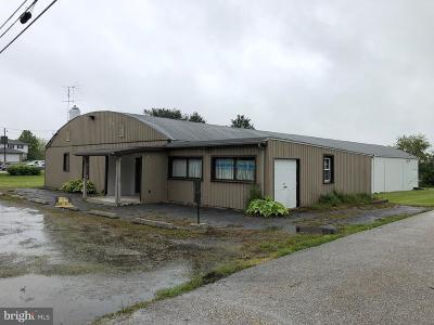 Adams County Commercial For Sale: 6455 Old Harrisburg Road