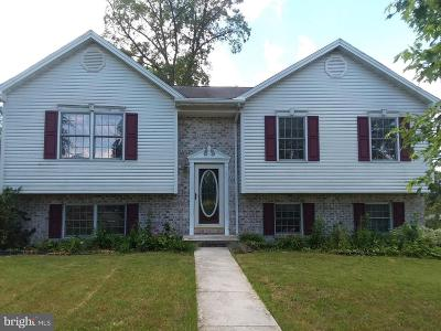 Littlestown Single Family Home For Sale: 11 Yorktowne Court
