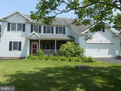 Gettysburg Single Family Home For Sale: 66 Pin Oak Lane